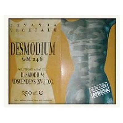 DESMODIUM GM246 250ML GTT ETNOPH