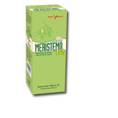 MERISTEMO YNKHAS 12 100ML